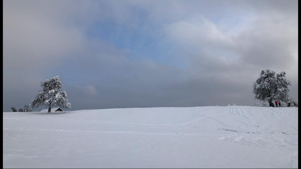 Winter_Stfa_2
