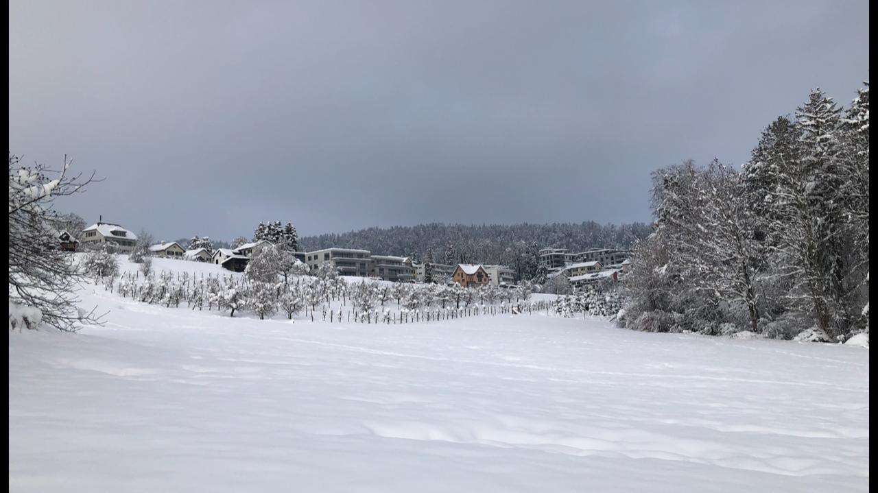Winter_Stfa_4